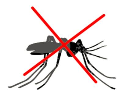 Lutte anti moustique