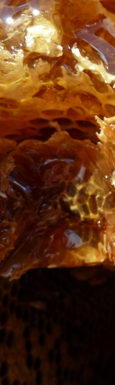 Montage miel 3-4
