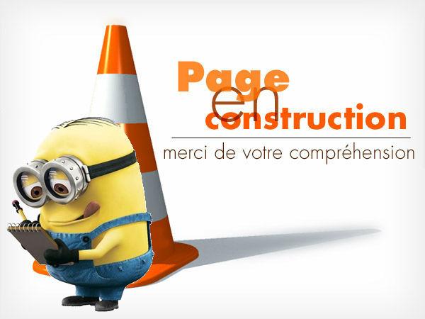 page_en_construction1