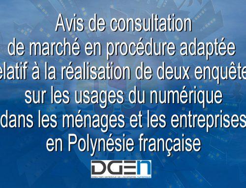 Avis de consultation de marché en procédure adaptée – Enquêtes sur les usages du numérique