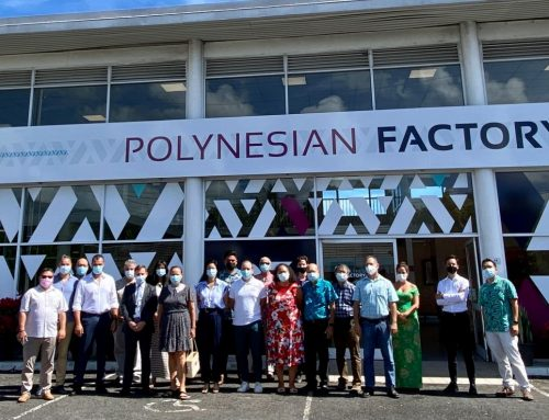 Présentation du concept de la POLYNESIAN FACTORY