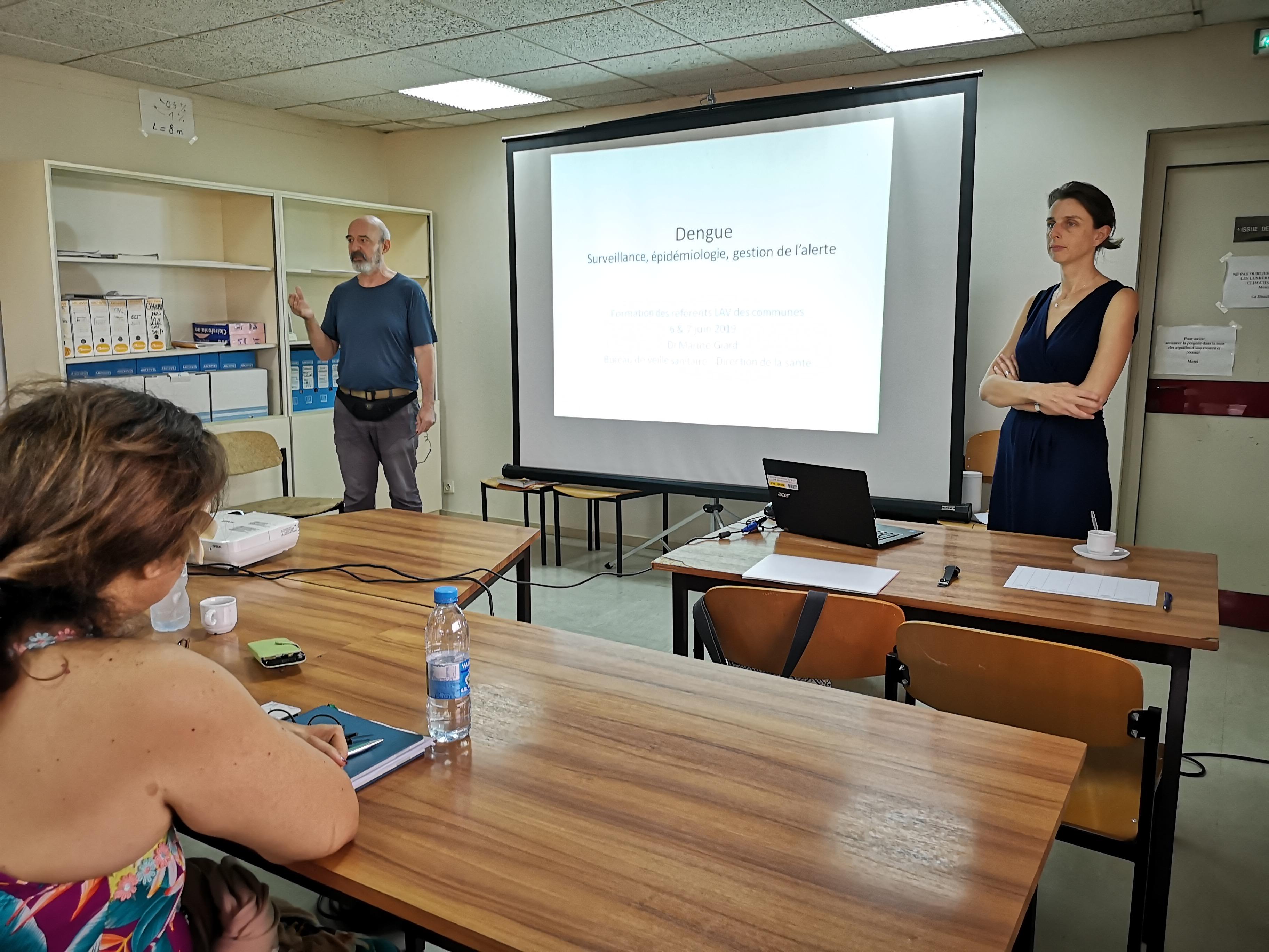 Formation sur la lutte antivectorielle au CHSP