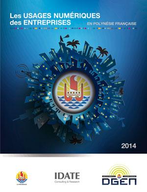 Rapport sur les usages des entreprises en Polynésie française 2014