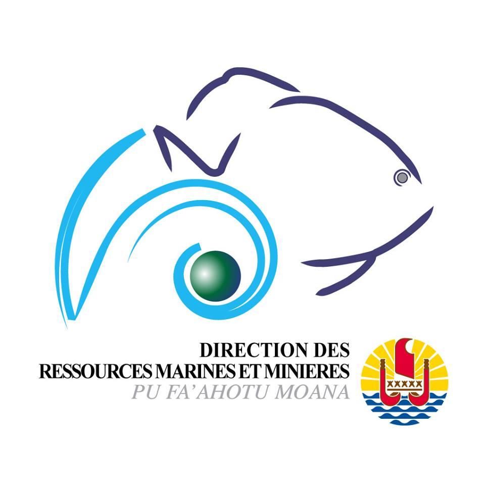 Logo de la DRMM