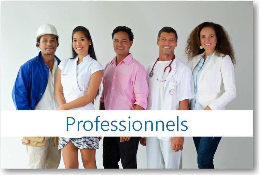 Rubrique professionnels du site de la DICP