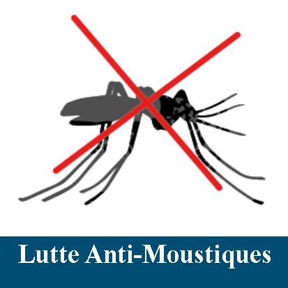moustiques-ok