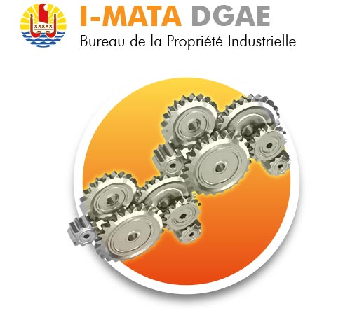 Téléservice DGAE : I-MATA